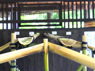 そうめんは竹を伝って流れてきます