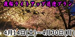 桜ライトアッププラン