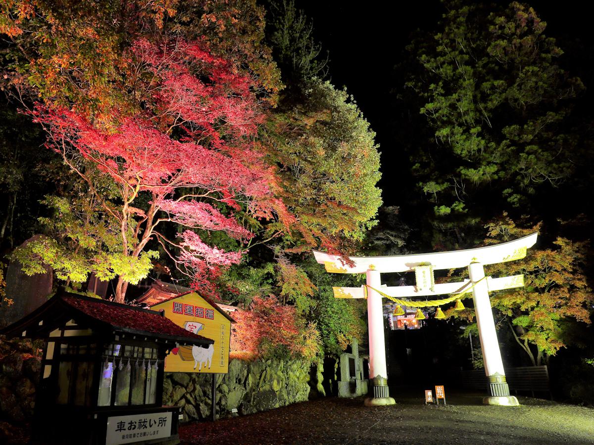 【宝登山神社】当館より15分。秩父三社の一社、ライトアップもあります