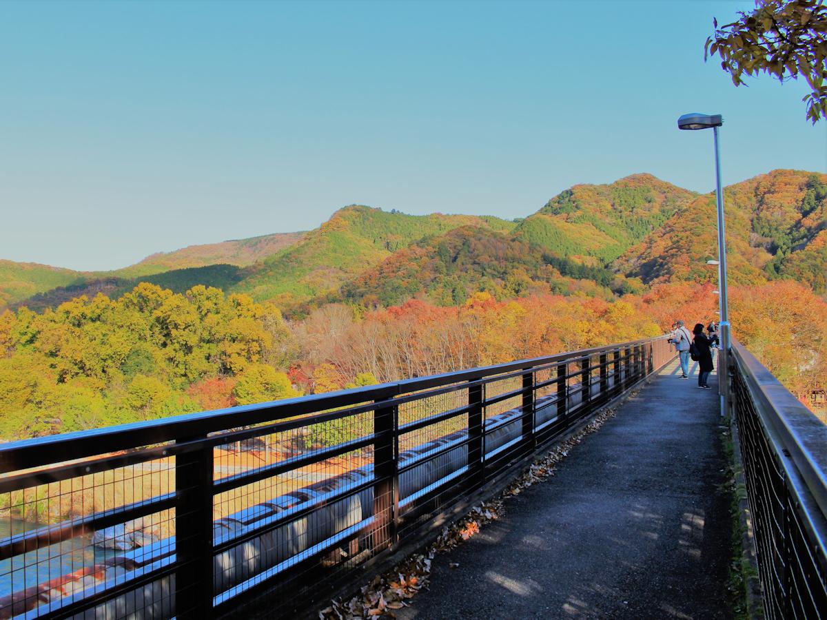 【金石水管橋】当館より徒歩15分。360度紅葉ビューが売りの歩行者専用の橋