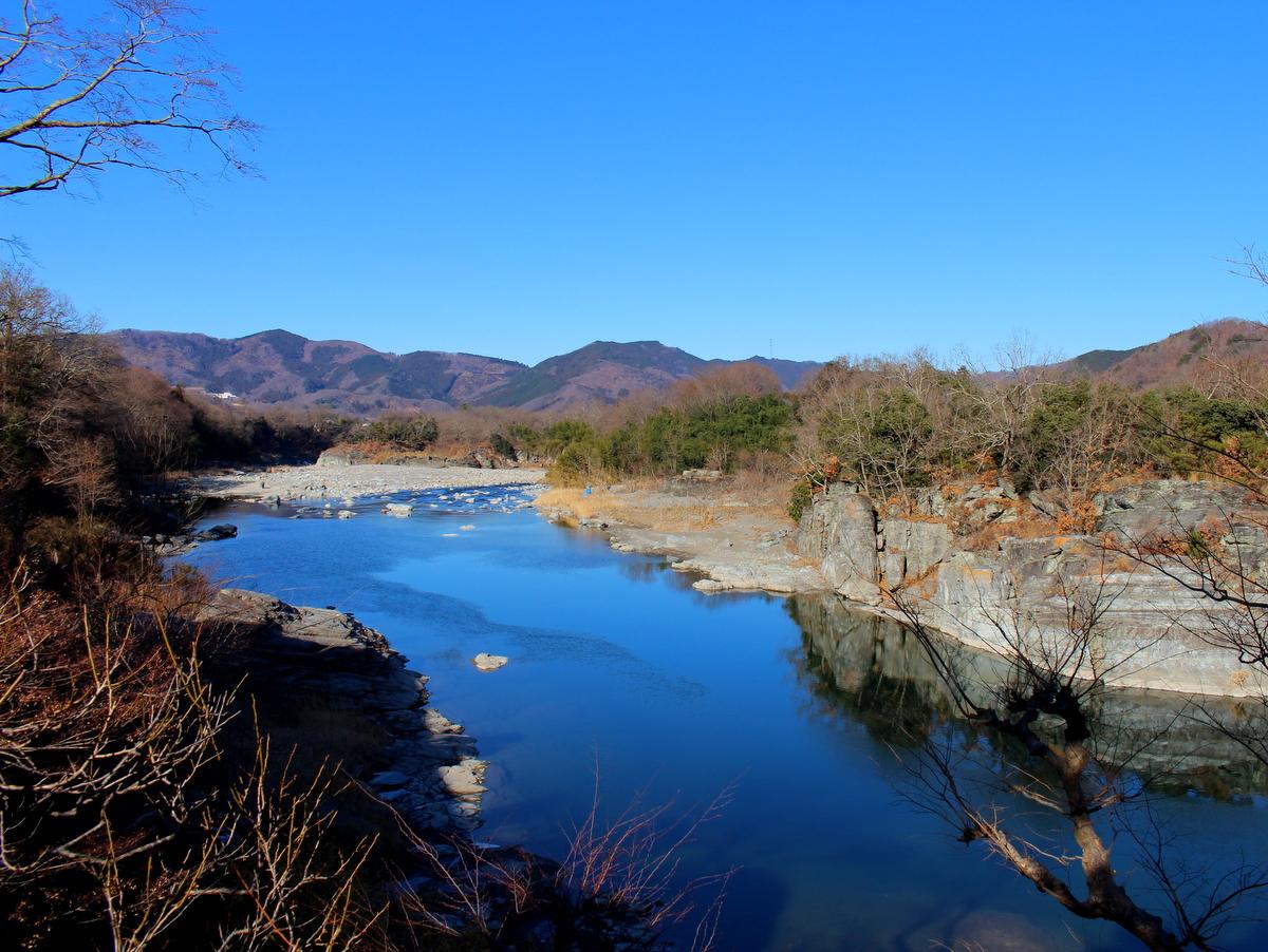 荒川下流(12月頃)