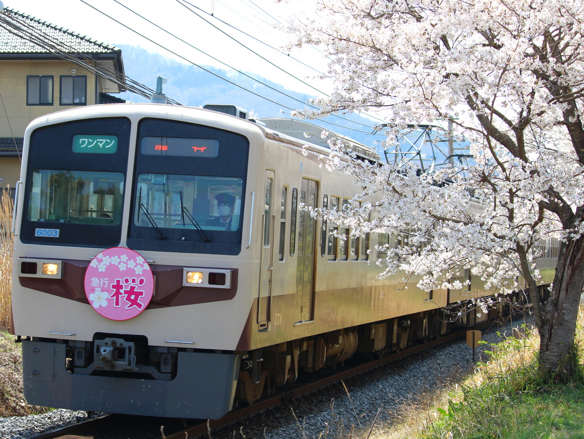 6000系急行電車(旧西武101系)